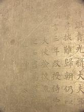 《大唐故特进观国公墓志》