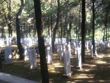(图)陵园墓碑