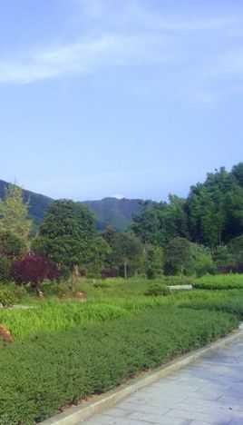 宿舍,校内还建有温室大棚,蔬菜种植基地,水稻实验田,果树园,110延长米