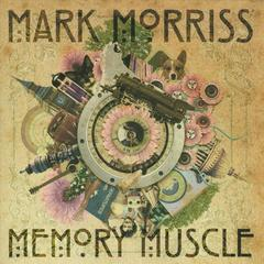 memory muscle
