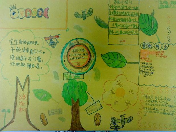 三年级下册蚕宝宝手抄报