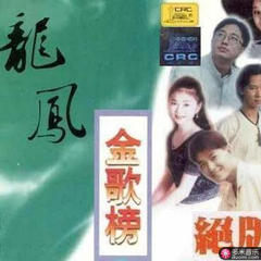 龙凤金歌榜vol.6