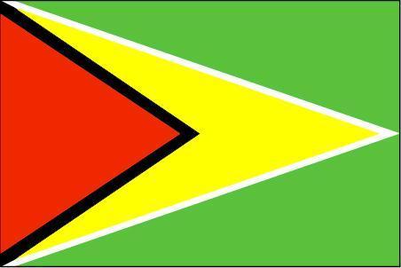 带白边的黄色三角形箭头在旗面上划分出两个相等对应