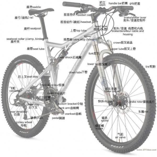 自行车的结构加图,最好有详细介绍,谢谢