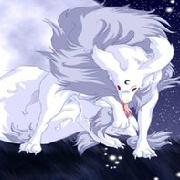 孤独狼之殇